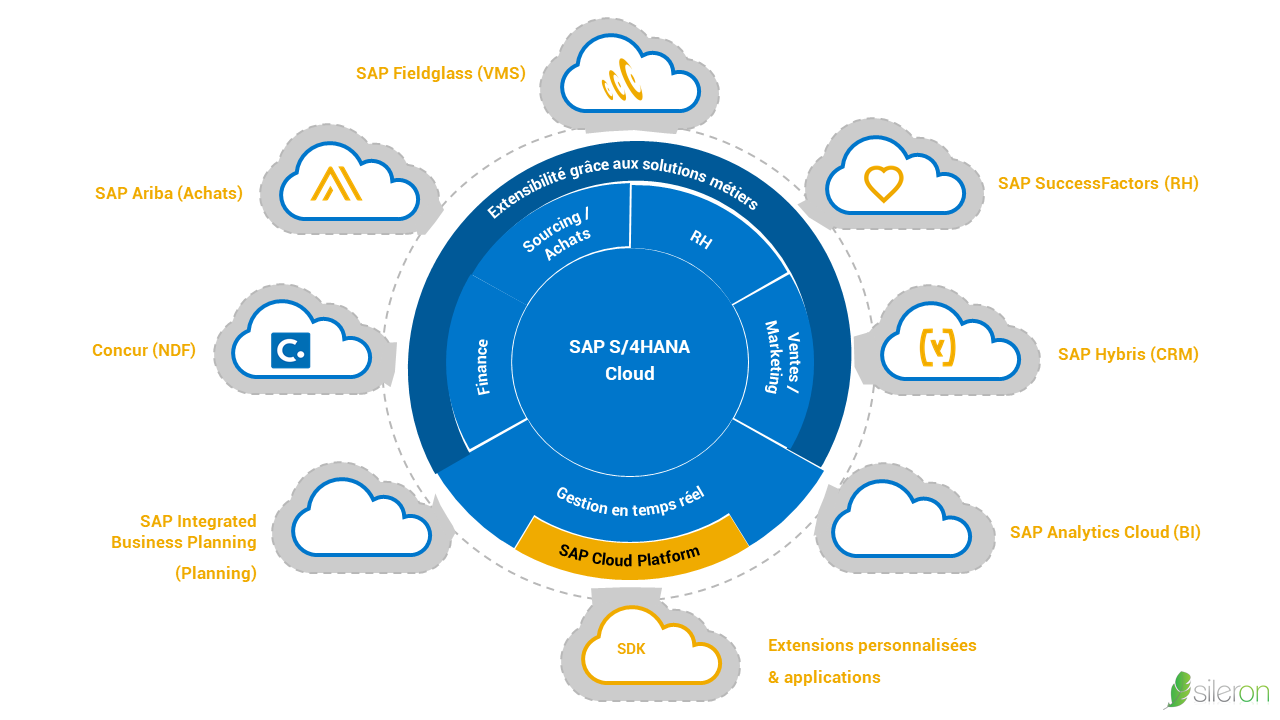 S/4 HANA Cloud socle