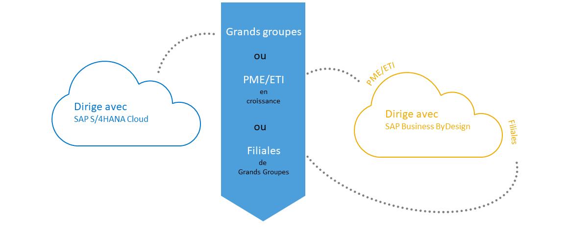 SAP Business ByDesign VS S/4 Hana Cloud